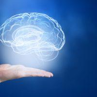 Wir sind was wir denken - Emotionen verändern Zellen
